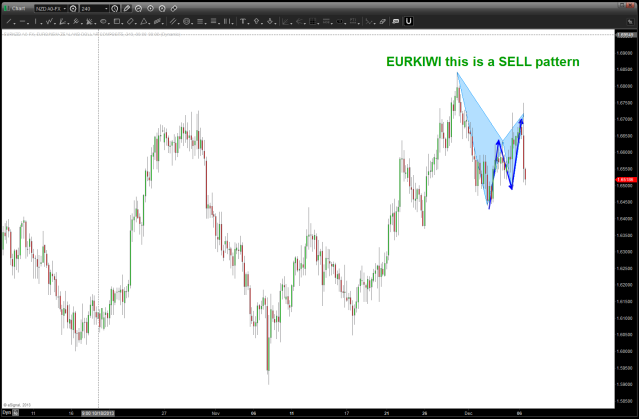 EUROKIWI sell pattern result from 12/05.